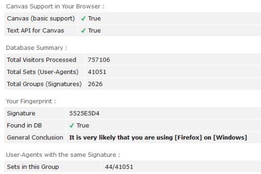 How to block canvas fingerprinting