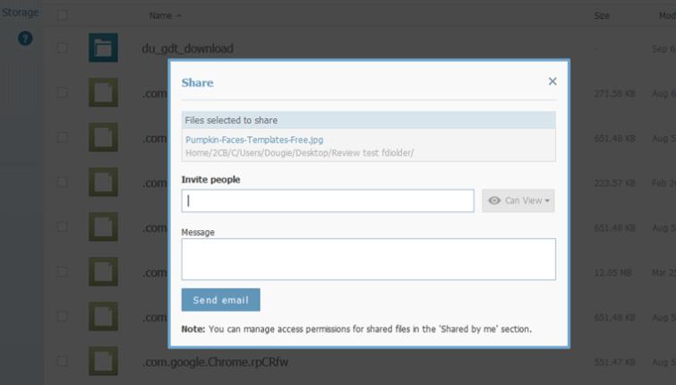 iDrive file sharing