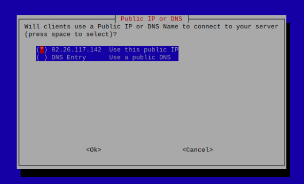 Public IP or DNS options